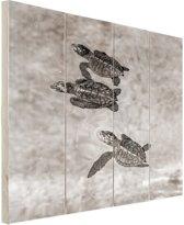 Schildpadden zwart-wit foto Hout 20x30 cm - klein - Foto print op Hout (Wanddecoratie)