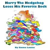 Harry The Hedgehog Loses His Favorite Sock