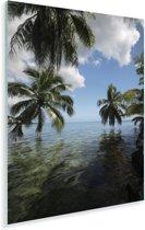 Palmbomen op een strand in Moorea in Oceanië Plexiglas 20x30 cm - klein - Foto print op Glas (Plexiglas wanddecoratie)