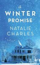 A Winter Promise