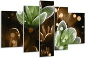 Glasschilderij Bloem | Groen, Bruin | 170x100cm 5Luik | Foto print op Glas |  F005043