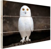 Sneeuwuil Hout 60x40 cm - Foto print op Hout (Wanddecoratie)