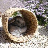 Rosewood Hyacint Konijnentunnel - Konijnenspeelgoed - 30 x 20 cm