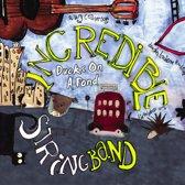 Ducks On A Pond -Cd+Dvd-