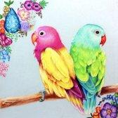 SEOS Shop ® Diamond Painting Pakket Gekleurde Papegaaien - Volwassenen - 30x30 cm