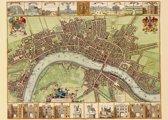 Poster Historische Kaart London - Wencesclas Hollar - Plattegrond - 1689 - Large 50x70 - Kleur - Cartografie - Oude Kaart - Engeland/Verenigd Koninkrijk