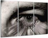 Canvas schilderij Ogen | Grijs, Zwart, Wit | 120x80cm 3Luik