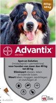 Bayer advantix spot on 600/3000 40+ kg - 4 pip