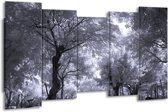 Canvas schilderij Bomen | Wit, Zwart, Grijs | 150x80cm 5Luik