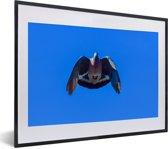 Foto in lijst - Foto van een houtduif tijdens de vlucht met een blauwe hemel fotolijst zwart met witte passe-partout klein 40x30 cm - Poster in lijst (Wanddecoratie woonkamer / slaapkamer)