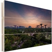 Prachtige sterrenhemel boven Gardens by the Bay in Singapore Vurenhout met planken 60x40 cm - Foto print op Hout (Wanddecoratie)