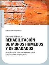 Rehabilitacion de muros húmedos y degradados