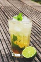 Mojito Tropical Drink Journal
