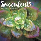 Succulents Kalender 2019