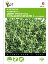 2 stuks Buzzy Tijm Echte Winter Thymus vulgaris