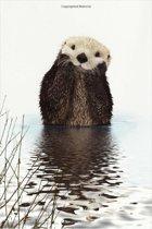 Otter Notebook