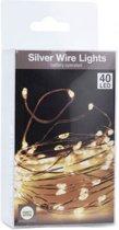 Lichtsnoer van Zilverkleurig Draad – 40 LED Lampjes – Lengte 2 meter