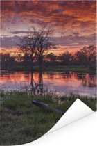 Moeras en bomen in de schemering in het Nationaal park Chobe Poster 80x120 cm - Foto print op Poster (wanddecoratie woonkamer / slaapkamer)