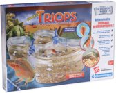 Préhistorische dieren Triops Aquarium