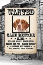 Brittany Dog Wanted Poster