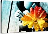 Canvas schilderij Bloem   Geel, Oranje, Blauw   140x90cm 1Luik