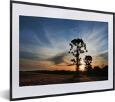 Foto in lijst - Parana pine tegen een zonsondergang fotolijst zwart met witte passe-partout klein 40x30 cm - Poster in lijst (Wanddecoratie woonkamer / slaapkamer)
