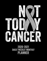 Not Today Brain Cancer: 2020 -2021 Daily/ Weekly/ Monthly Planner: 2-Year Personal Planner with Grid Calendar Gray Awareness Ribbon Appointmen