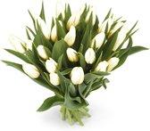 25 witte tulpen boeket