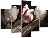 Glasschilderij Tulp | Bruin, Grijs, Wit | 100x70cm 5Luik | Foto print op Glas |  F002505