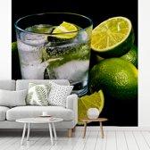 Fotobehang vinyl - Glas gin en tonic op ijs omgeven door limoenen breedte 450 cm x hoogte 450 cm - Foto print op behang (in 7 formaten beschikbaar)