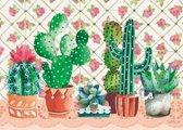 Puzzel Cactus Family 1000 Heye 29831