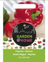Garden@Home Paprika Yolo Wonder
