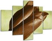 Glasschilderij Tulp | Bruin, Grijs, Zwart | 100x70cm 5Luik | Foto print op Glas |  F002578