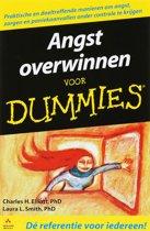 Voor Dummies - Angst overwinnen voor Dummies