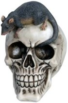 Schedel met een Rat beeld (groot 15 cm)