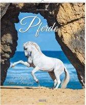 Pferde - Paarden Kalender 2020