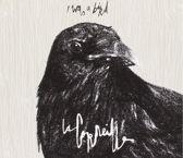I Was A Bird
