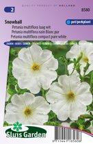 Sluis Garden - Petunia Snowball