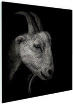 Geitenportret zwart-wit print Glas 80x120 cm - Foto print op Glas (Plexiglas wanddecoratie)