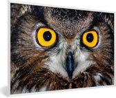 Foto in lijst - Close-up van een oehoe met felgele ogen fotolijst wit 60x40 cm - Poster in lijst (Wanddecoratie woonkamer / slaapkamer)
