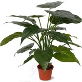 Kunst alocasia olifantsoor plant 51 cm