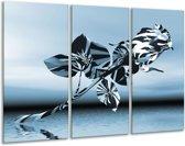 Glas schilderij Bloem, Roos | Blauw, Zilver | 120x80cm 3Luik | Foto print op Glas |  F006280