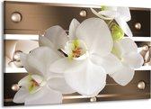 Canvas schilderij Orchidee | Bruin, Wit | 140x90cm 1Luik