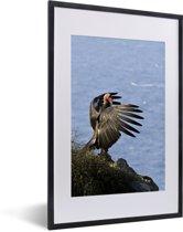 Foto in lijst - Een Californische condor bij de Stille Oceaan fotolijst zwart met witte passe-partout 40x60 cm - Poster in lijst (Wanddecoratie woonkamer / slaapkamer)