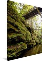 Brug over een waterkanaaltje in de bossen van Santa Cruz Californië Canvas 120x180 cm - Foto print op Canvas schilderij (Wanddecoratie woonkamer / slaapkamer) XXL / Groot formaat!