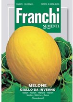 Melone Giallo Da Inverno - Honingmeloen  - set van 8 stuks