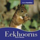 Dierenfamilies - Eekhoorns