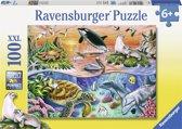 Ravensburger puzzel Bonte oceaan - Legpuzzel - 100 stukjes