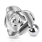 Helix piercing roos ©LMPiercings