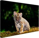 Tijgerwelp in het bos Canvas 30x20 cm - Foto print op Canvas schilderij (Wanddecoratie)